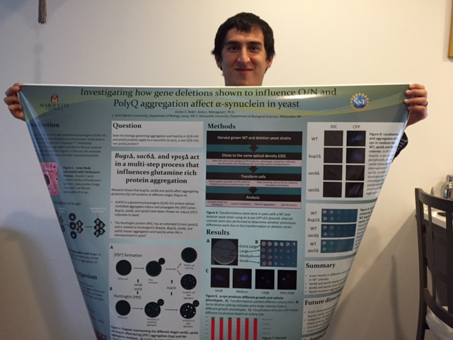 Does the biology governing aggregation and toxicity in Q/N rich and polyQ proteins apply to a-synuclein (a-syn), a non Q/N rich, non polyQ proetin? You'll have to ask Jordan.